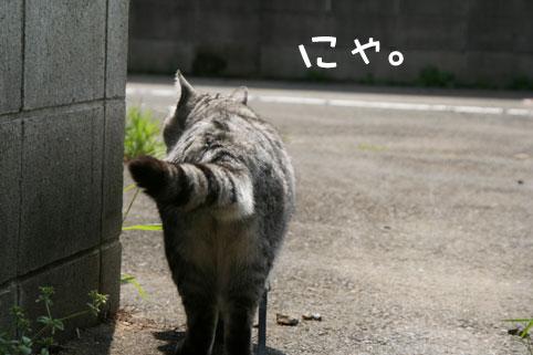0417_1.jpg