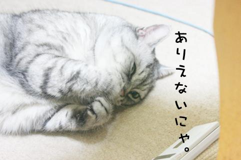 090812_3.jpg