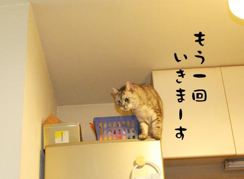 100828_4.jpg