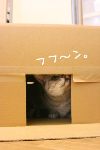 110217_2.jpg