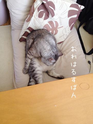 20121009_4.jpg