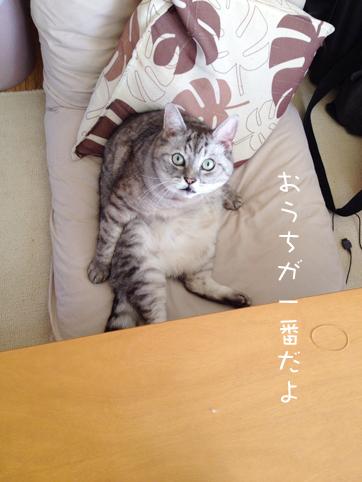 20121009_5.jpg