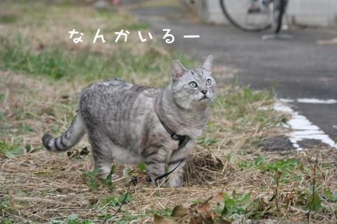 20121029_4.jpg