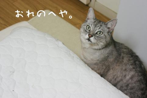 20121129_6.jpg