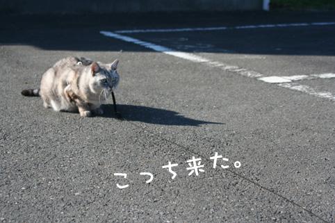20121208_3.jpg