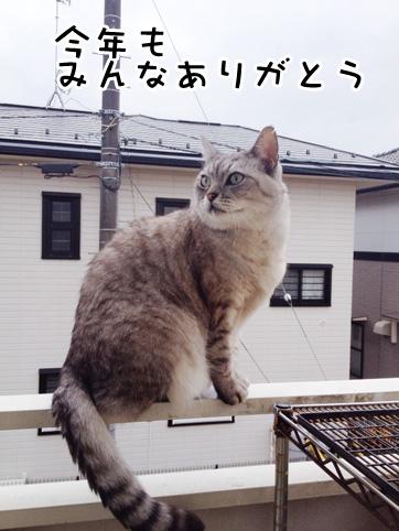 20121231_4.jpg