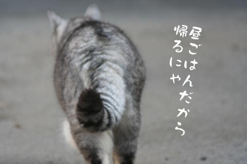 20131210_5.jpg