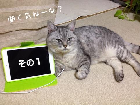 20130618_2.jpg