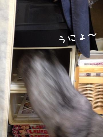 20130828_6.jpg
