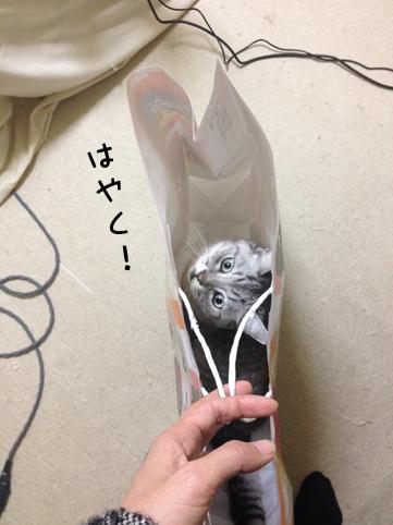 20140106_3.jpg