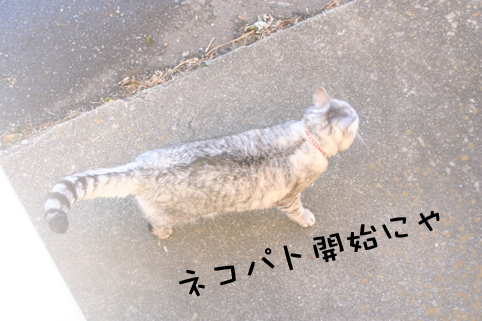 20140110_1.jpg