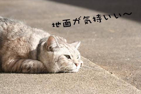 20140110_4.jpg