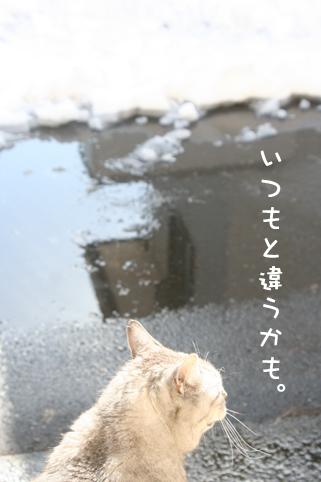 20140210_2.jpg