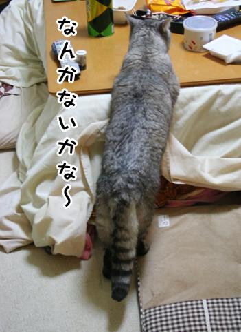 20140325_5.jpg