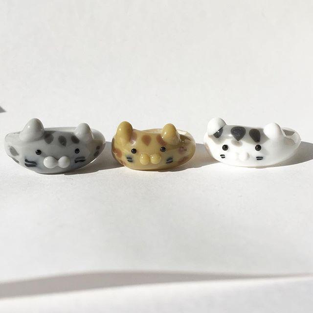 ガラスのリング。しまさんの仲間を作ってみました#cat #catstagram #followme #lampwork #ring #glass #指輪
