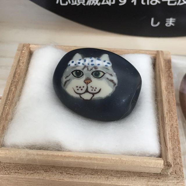 金曜日に、谷中ギャラリー猫町で開催されている沼田恵美子先生のとんぼ玉個展に行ってきましたいやーもう、素晴らしかったです!しまさんをモデルにしてくださったとんぼ玉に感動。しまさんのお兄さんネコらしい「しげさん」の登場に楽しくなり(笑)しまさん以外の猫さんのとんぼ玉もたくさん。猫好きな方はとっても楽しめる個展だと思いますぜひぜひお時間ある方は、伺ってみてください〜6/3まで(5/28-30休廊)#ねこ #猫町 #とんぼ玉 #しまさん #谷中